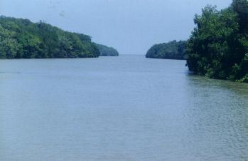 Foz do rio Parnaiba